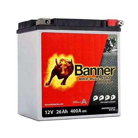 https://www.bannerbatterien.com/de-ch/Produkte/Starterbatterien/Bike-Bull-AGM-PROfessional/315-AGM-PRO-530-01-ETX30L
