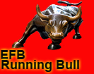 RunningBullEFB